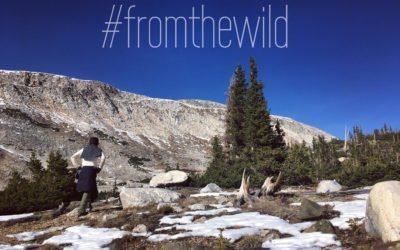 Why #fromthewild?